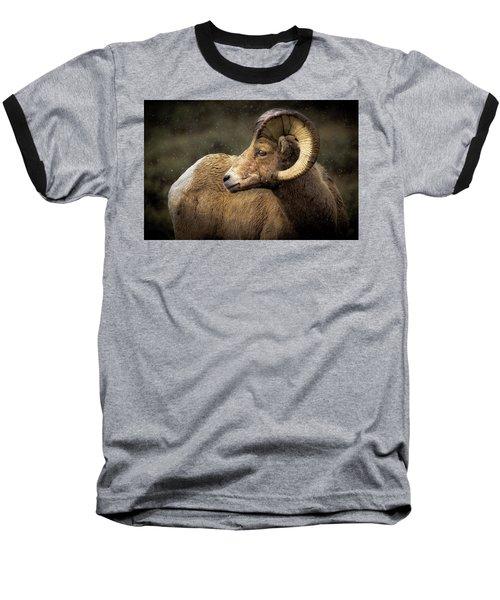 Looking Back - Bighorn Sheep Baseball T-Shirt