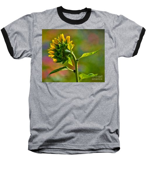 Looking For The Sun Baseball T-Shirt