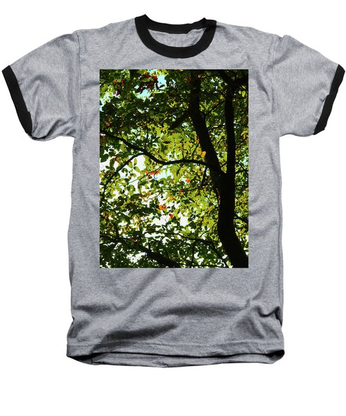 Looking Thru The Leaves Three Baseball T-Shirt