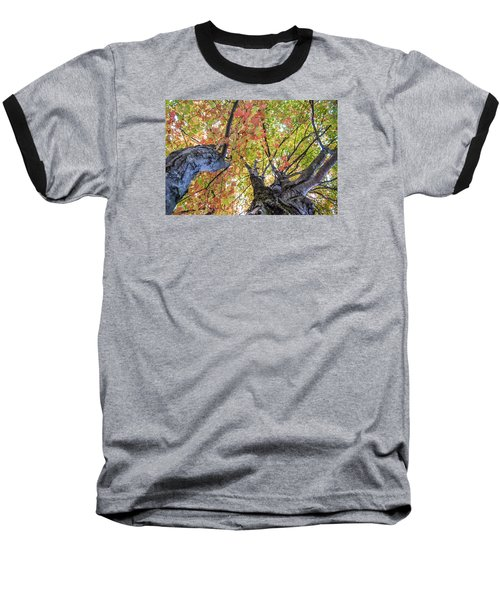 Baseball T-Shirt featuring the photograph Looking Up - 9670 by G L Sarti