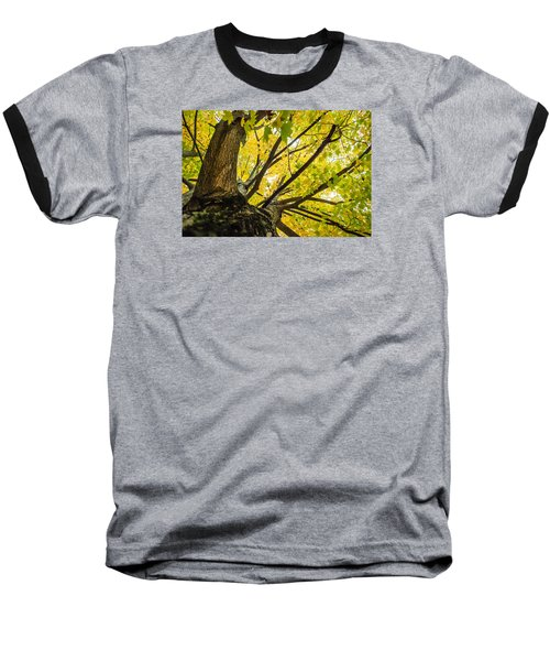 Baseball T-Shirt featuring the photograph Looking Up - 9676 by G L Sarti