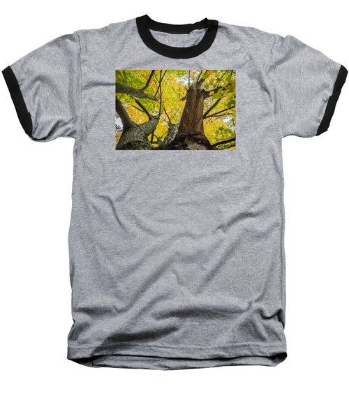Baseball T-Shirt featuring the photograph Looking Up - 9682 by G L Sarti