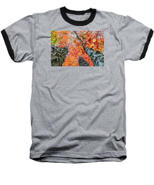 Baseball T-Shirt featuring the photograph Looking Up - 9743 by G L Sarti
