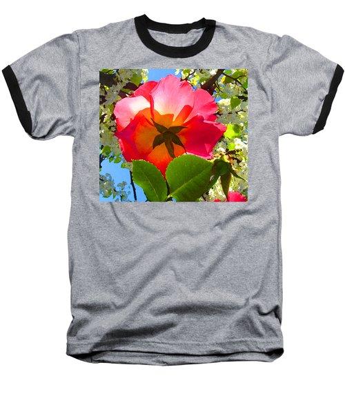 Looking Up At Rose And Tree Baseball T-Shirt