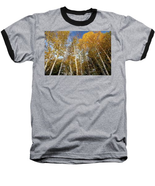 Looking Up Baseball T-Shirt