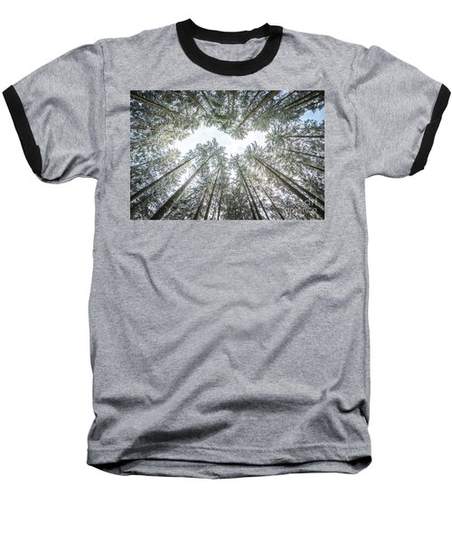 Baseball T-Shirt featuring the photograph Looking Up In The Forest by Hannes Cmarits