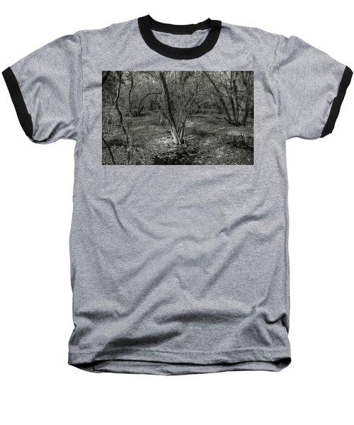 Loop Road Swamp #3 Baseball T-Shirt