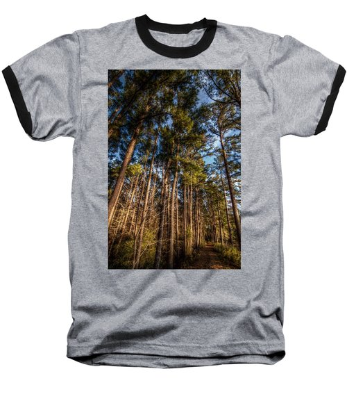Lost In The Woods Baseball T-Shirt