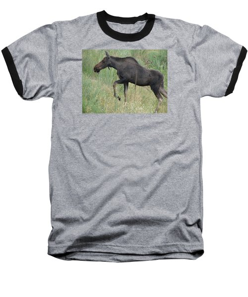 Lost Moose On The Loose In Evergreen Colorado Baseball T-Shirt