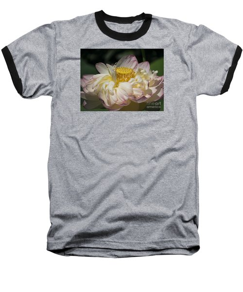 Lotus 2015 Baseball T-Shirt