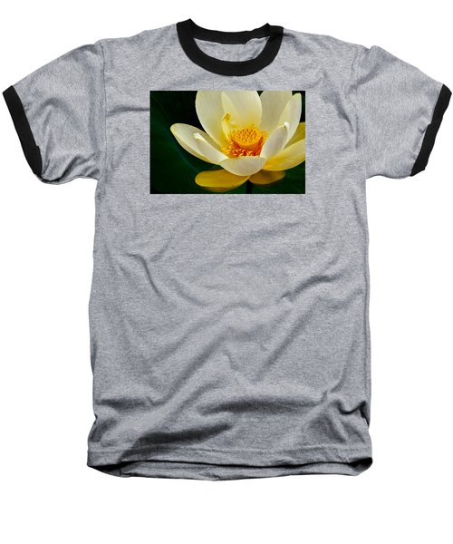 Lotus Blossom Baseball T-Shirt