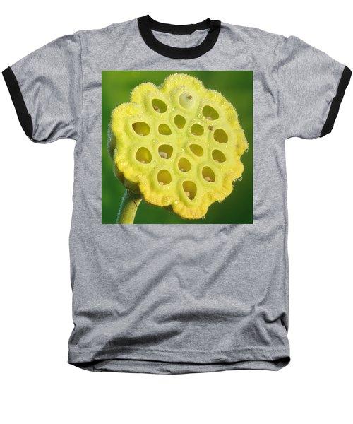Lotus Pod Baseball T-Shirt