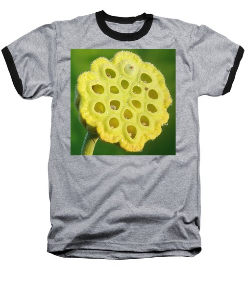 Lotus Pod Baseball T-Shirt