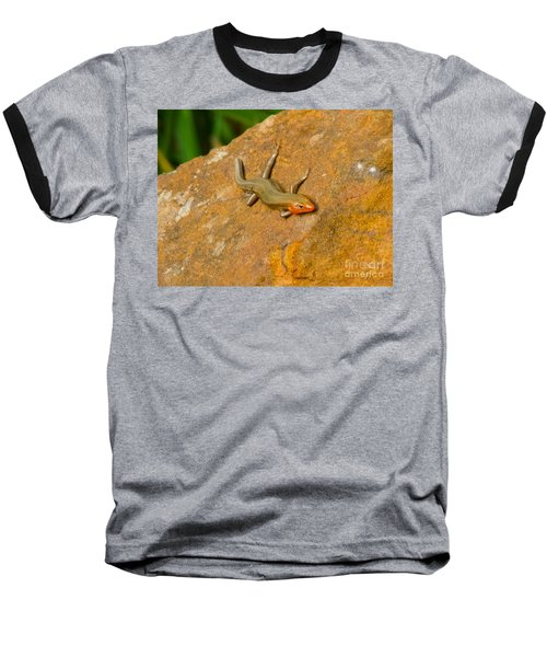 Lounging Lizard Baseball T-Shirt by Rand Herron