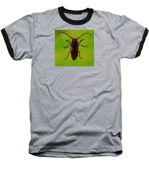 Love Bug Baseball T-Shirt by Danielle R T Haney