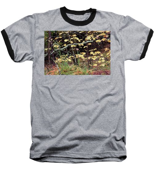 Lovely Autumn Witch Hazel -   Baseball T-Shirt
