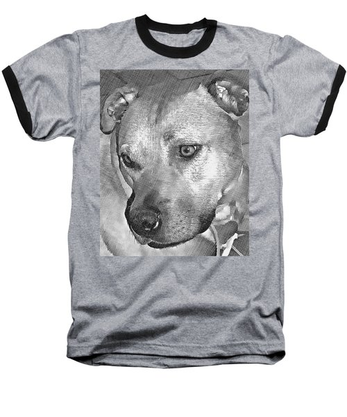 Lovely Dog Baseball T-Shirt