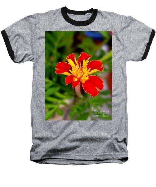 Lovely Little Flower Baseball T-Shirt