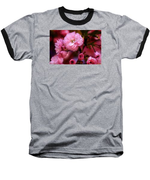 Lovely Spring Pink Cherry Blossoms Baseball T-Shirt by Shelley Neff