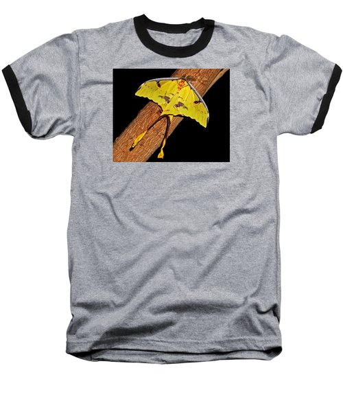 Baseball T-Shirt featuring the photograph Luna Moth by Judy Vincent