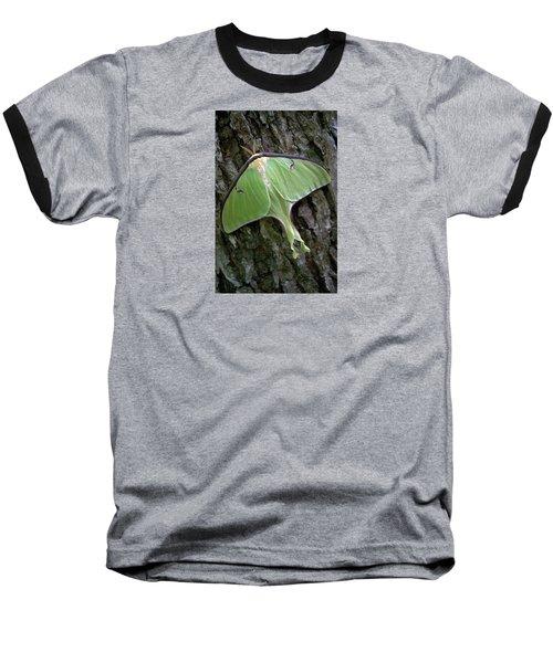 Baseball T-Shirt featuring the photograph Luna Moth by Marie Hicks
