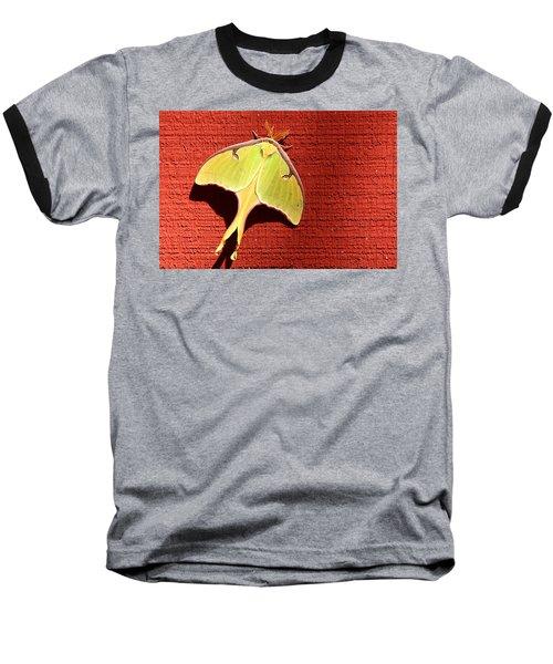 Luna Moth On Red Barn Baseball T-Shirt by Sheila Brown