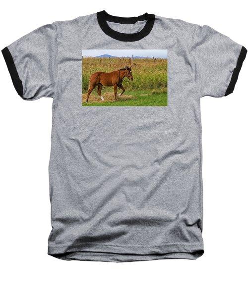 Lunch Break Baseball T-Shirt by Alana Thrower