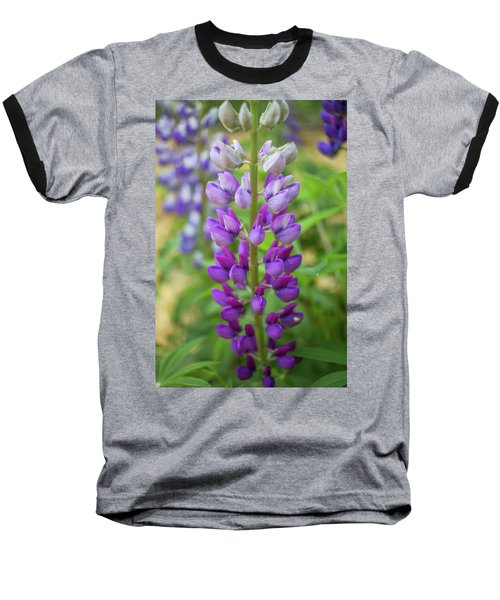 Baseball T-Shirt featuring the photograph Lupine Blossom by Robert Clifford