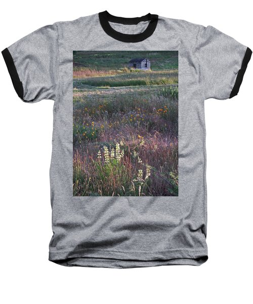 Lupine Baseball T-Shirt by Laurie Stewart