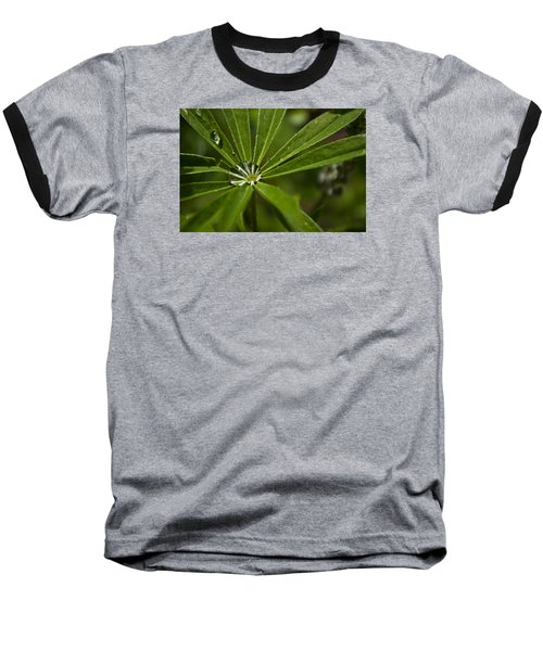 Lupine Leaf Baseball T-Shirt