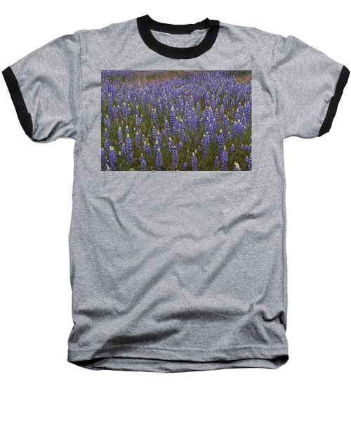 Baseball T-Shirt featuring the photograph Lupines by Doug Herr