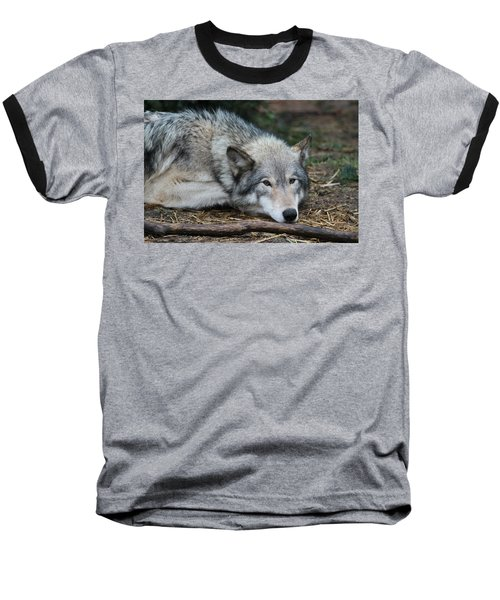 Baseball T-Shirt featuring the photograph Lying In Wait by Laddie Halupa