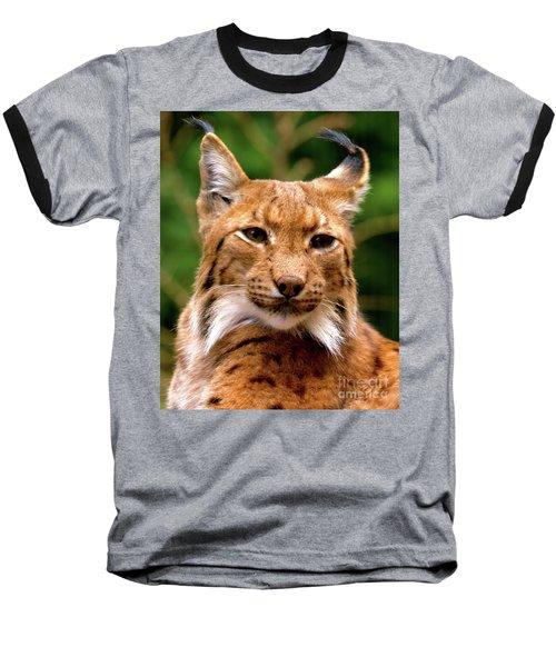 Lynx Portrait Baseball T-Shirt