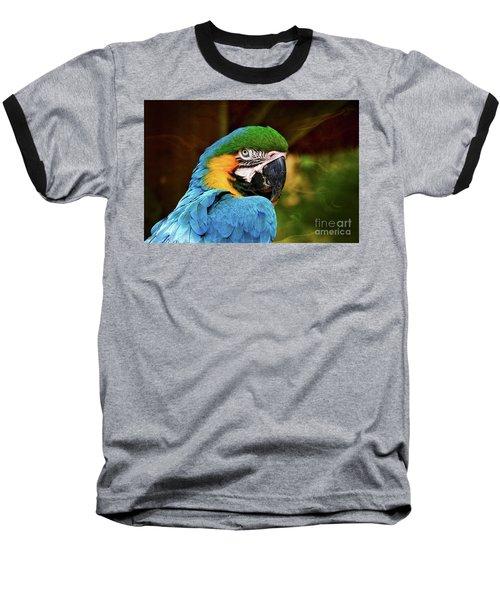 Macaw Portrait Baseball T-Shirt