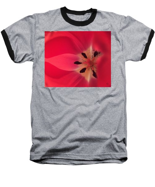 Macro Beauty Tulip Baseball T-Shirt