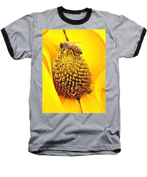 Macro Bee Baseball T-Shirt