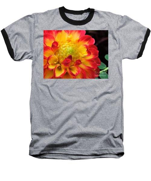 Macro Dahlia Baseball T-Shirt