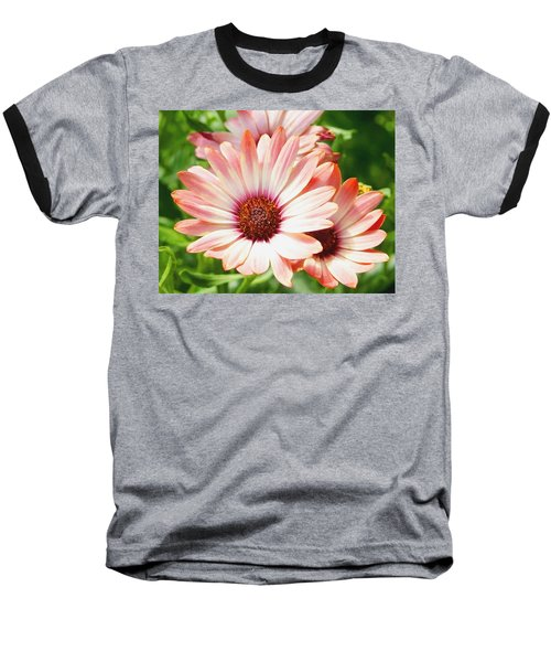 Macro Pink Cinnamon Tradewind Flower In The Garden Baseball T-Shirt