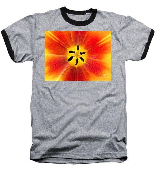 Macro Tulip Baseball T-Shirt by Elizabeth Dow