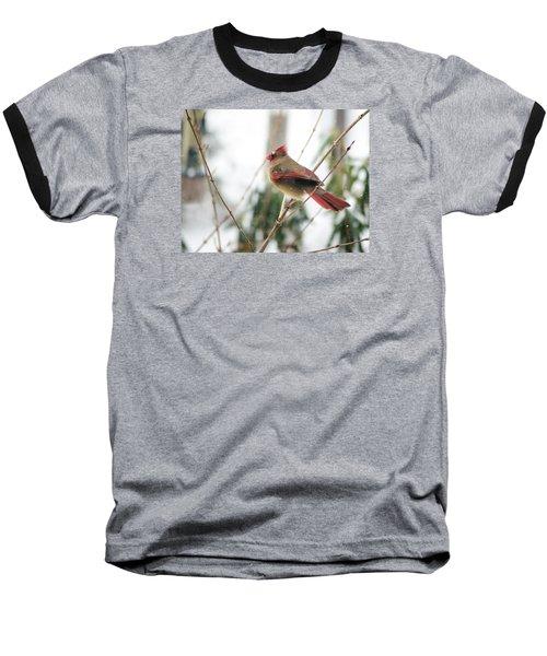 Madam Cardinal Baseball T-Shirt