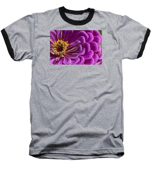 Magenta Zinnia Baseball T-Shirt