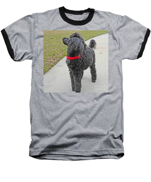 Maggie On Bird Watch Baseball T-Shirt