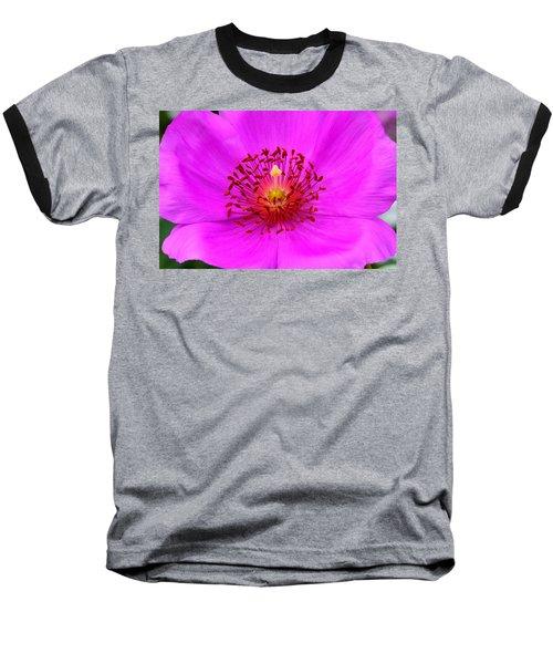Magic Magenta - Calandrinia Baseball T-Shirt