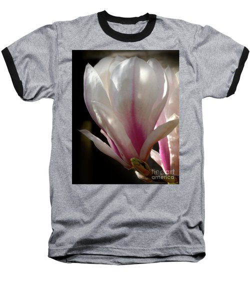 Magnolia Bloom Baseball T-Shirt by Stephen Melia