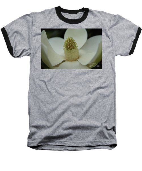Magnolia Blossom 4 Baseball T-Shirt