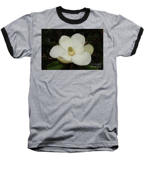 Magnolia Blossom 5 Baseball T-Shirt
