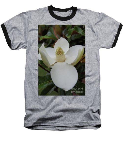 Magnolia Blossom 6 Baseball T-Shirt