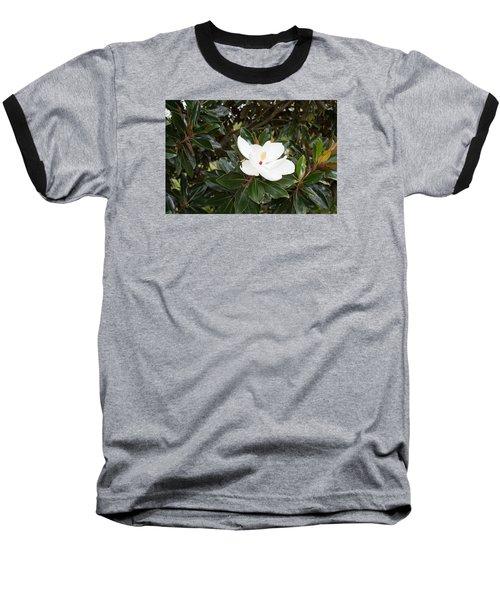 Magnolia Blossom Baseball T-Shirt by Linda Geiger