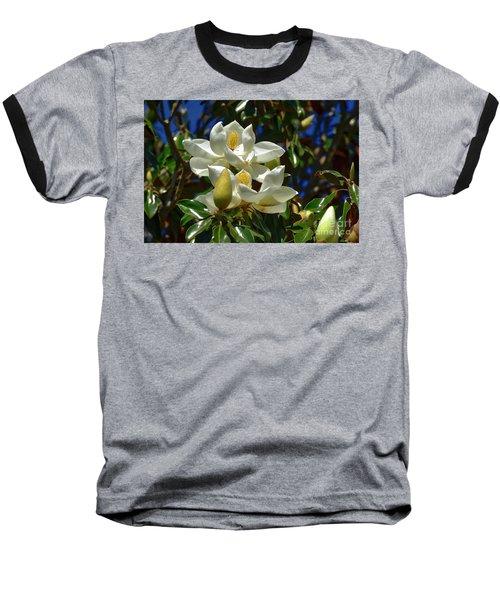 Magnolia Blossoms Baseball T-Shirt by Kathy Baccari