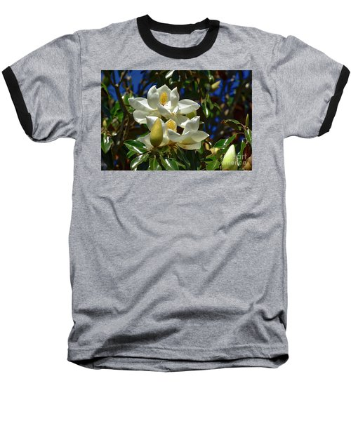Magnolia Blossoms Baseball T-Shirt